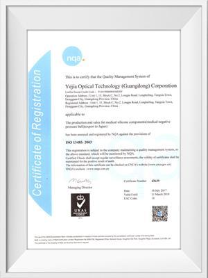 烨嘉光电ISO13485荣誉证书(英文)